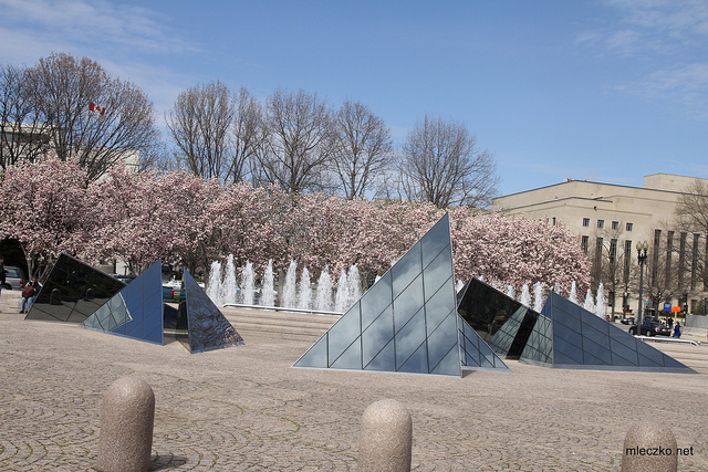 Washington DC and Cherry Blossom Festival