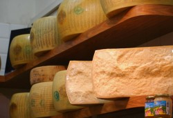 Parmigiano on the shelves