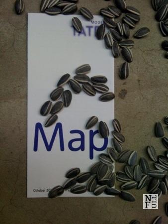 TATE Gallery, Ai Weiwei