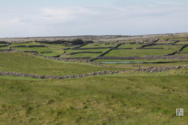 Green pastures and stone walls