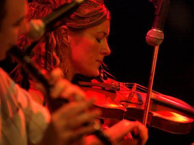 The Irish Fiddler