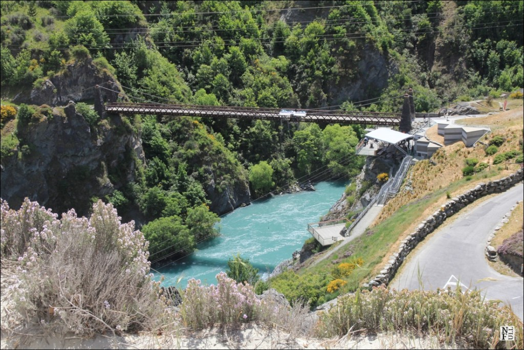 Bungy jumping in NZ