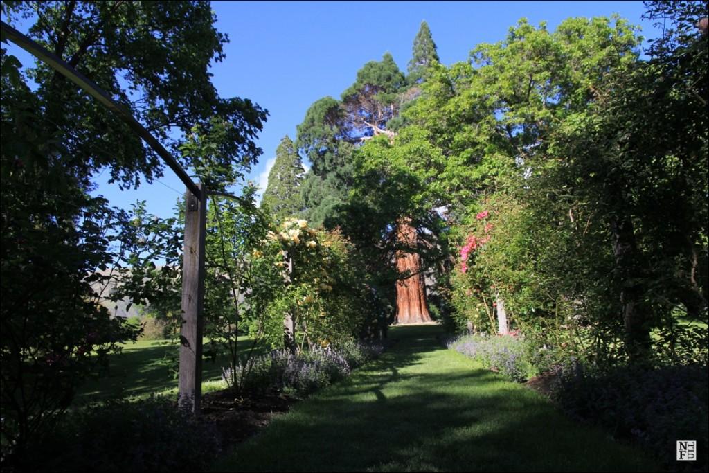 Public garden in Wanaka