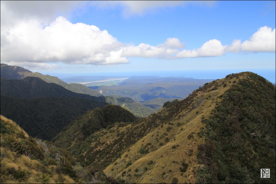 Alex Knob Trail - view towards Tasman Sea, West Coast, New Zealand.