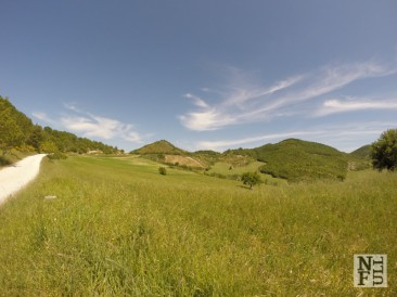 The Gentle Hills of Marche