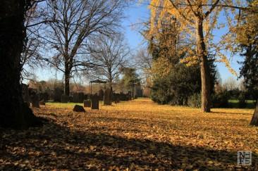 Guest post: Ferrara And Its Secrets
