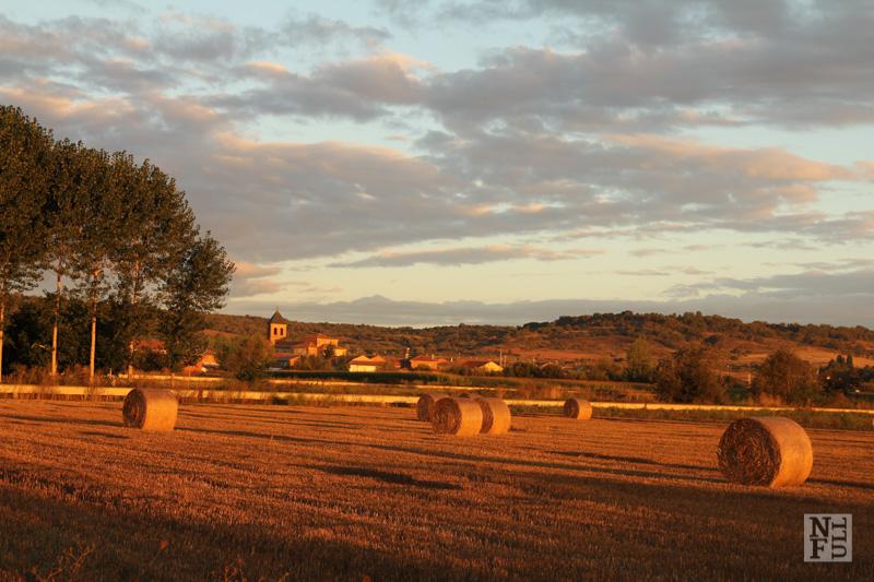 Along The Way, from Orbigo to Astorga, Camino de Santiago, Spain