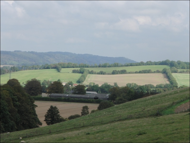 Rolling hills of Southern England