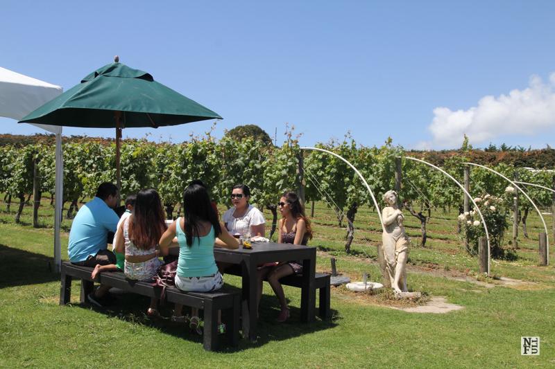 Enjoying a good company on Waiheke Island