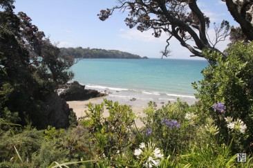 Waiheke Island: wine, food and bike