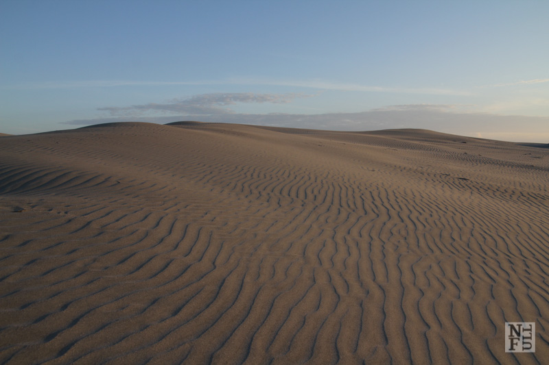Sand Dune, Farewell Spit, New Zealand.
