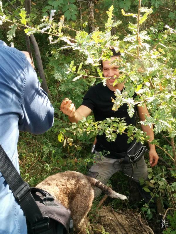 Truffle hunt, Portico di Romagna, Italy
