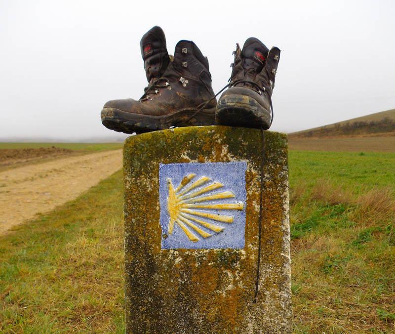Along the Camino
