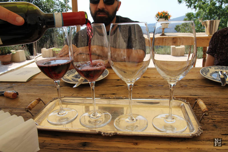 Have a glass! Wine of Valpolicella, Italy